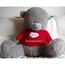 Медведь-teddy